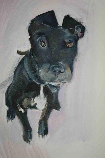 """""""Black Dog"""" artist Sally Muir"""