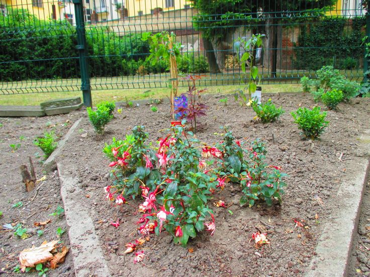 ...zahradničení..