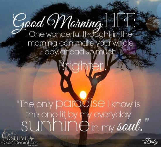 Good Morning Happy Life Quotes: 17 Best Ideas About Good Morning Beautiful Poem On