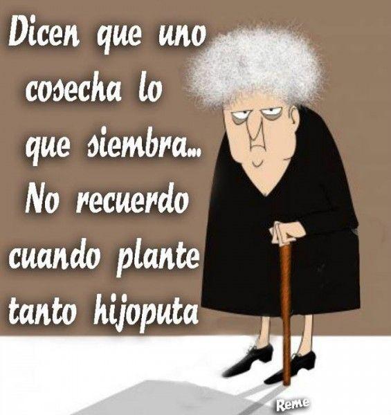humor Imágenes graciosas, humor, diversión, chistes #Humor #Fun #Joke #Funny #Jokes #Risas #Hahaha #Jajaja @FiorellaTwit