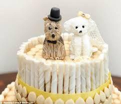 nunta cateei tort