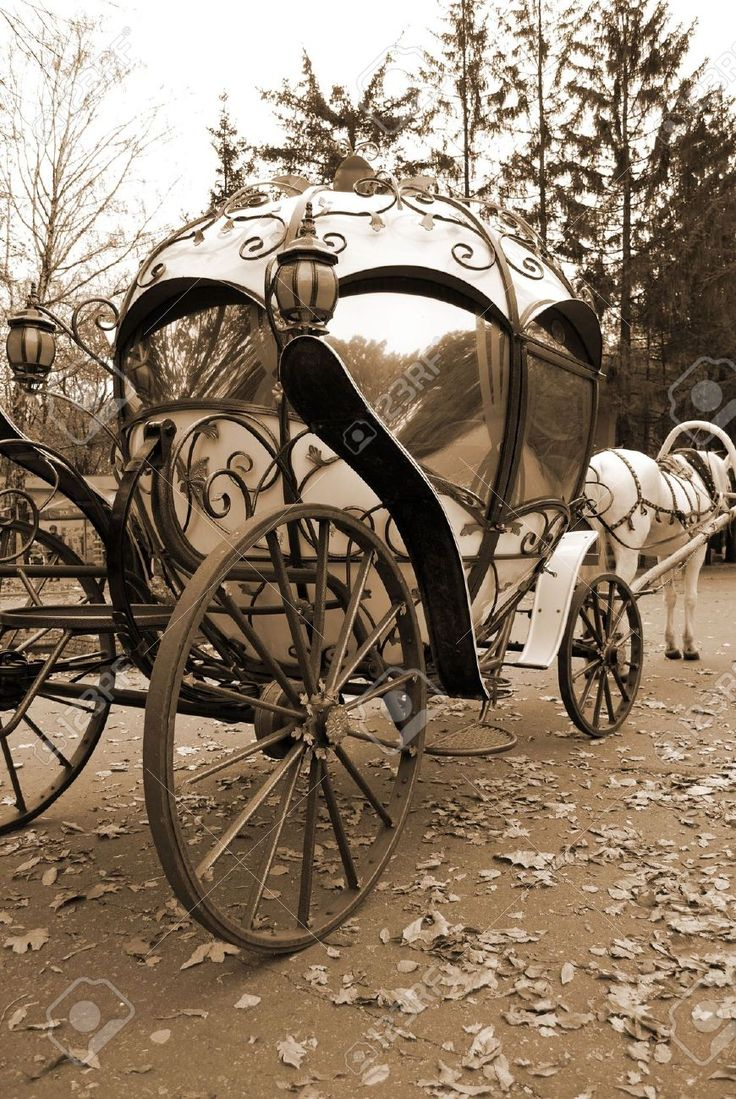 Fairy Tale Carriage Stock Photo, Picture And Royalty Free Image. Image 5747232.