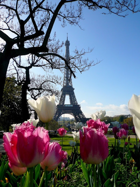 Paris in the spring...<3