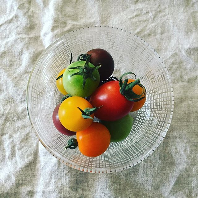 Instagram media by yoshikonitta - ミニトマト。それぞれの個性がすごいです。お昼に美味しくいただきました。#新田佳子#うつわ#ガラス