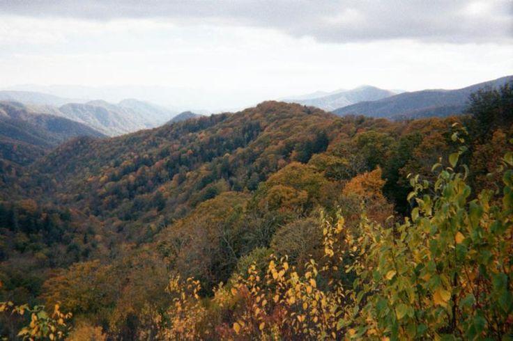 APA Folklore: Mountain Medicine