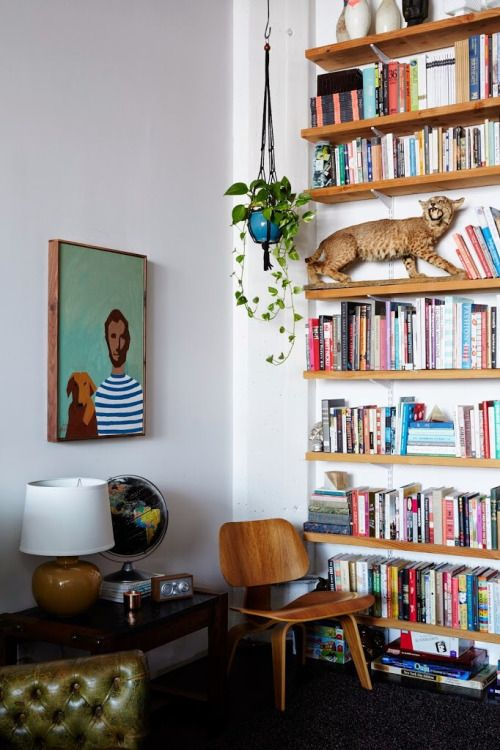 globe books, hanging plant, mustard yellow lamp, wood chair, dark wood coffee table, and stuffed wild animal.