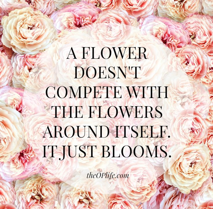 Image result for a flower doesn't think of competing quote