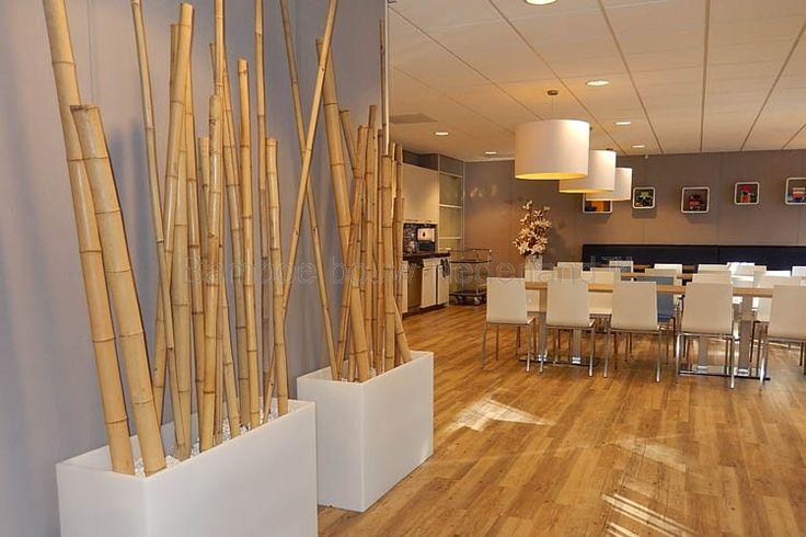 design bamboe.jpg