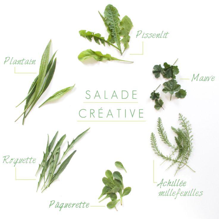 salade creative