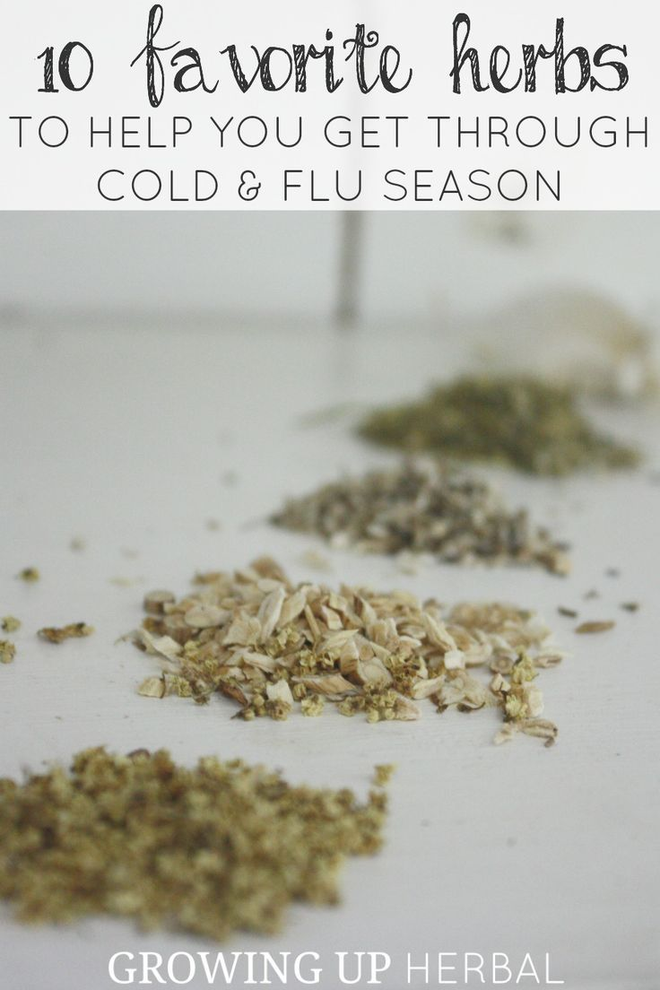 10 Favorite Herbs To Help You Get Through Cold & Flu Season   Growing Up Herbal   Learn which herbs to have on hand during cold and flu season and how to use them.
