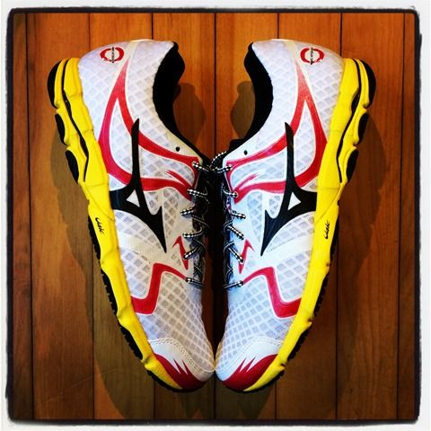 Mizuno Hitogami  (9mm drop) - looks like a good option for a more cushioned high mileage trainer.