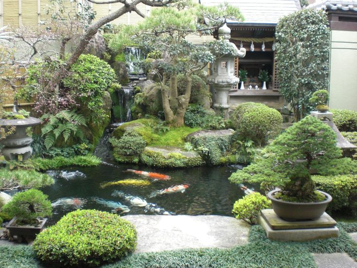 12 best images about koi pools on pinterest earth day for Koi pond overflow design