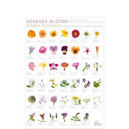 Poster Essbare Blüten | Springlane.de