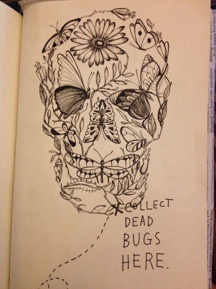 Wreck this journal: collect dead bugs here