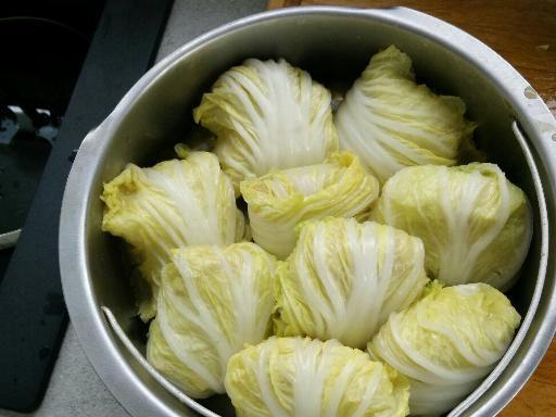 1000 id es propos de salade de chou chinois sur for Cuisine un chinois
