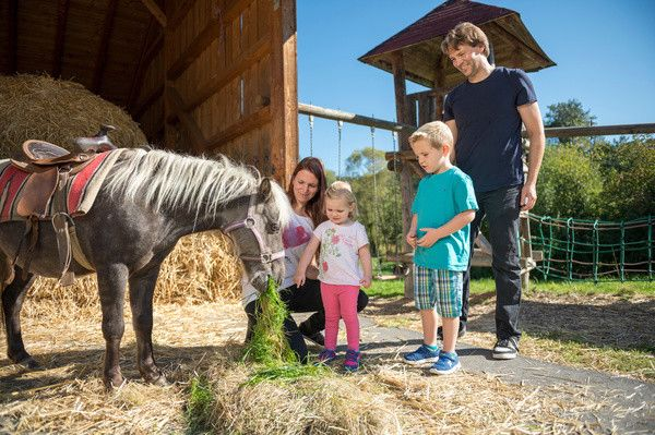 Urlaub auf dem Bauernhof Bayerischer Wald Schreinerhof Schönberg Kinderhotel Bayern