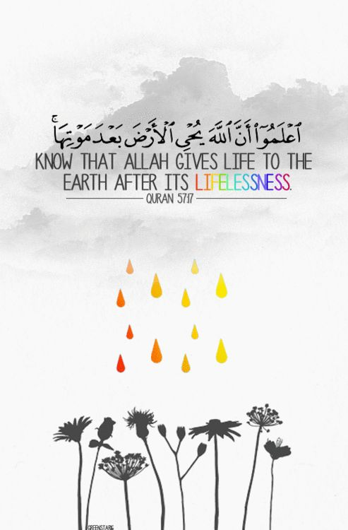 Know that Allah Gives life to the earth after its lifelesness ya Allah, give life to lifeless hearts!