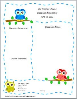 teacher newsletter template primary owls theme