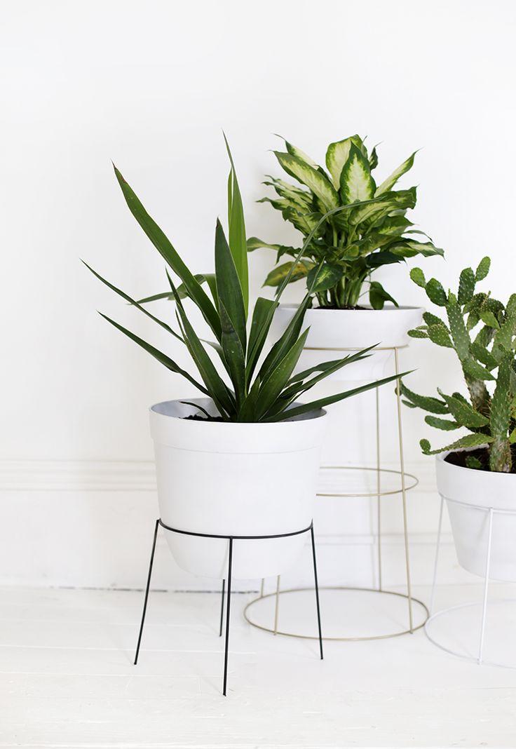 Best 25 diy plant stand ideas on pinterest plant stands garden plant stand and indoor plant - Plant pedestal indoor ...