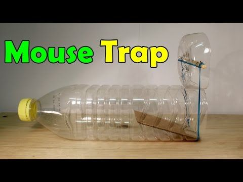 ❗️YouTube <--- MOUSE TRAP Live Trap ---> plastic bottle, paperclips, rubber bands, cardboard, Viola❗️ Your captured critter will chew his way out in a jiffy so don't expect to leave this trap too long without checking and dumping.. dumping outside your neighbors house would work best❗️