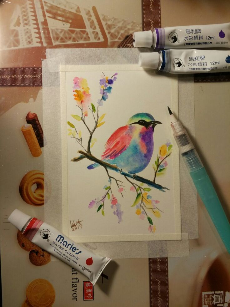 first try about watercolor bird. mimic others painting work