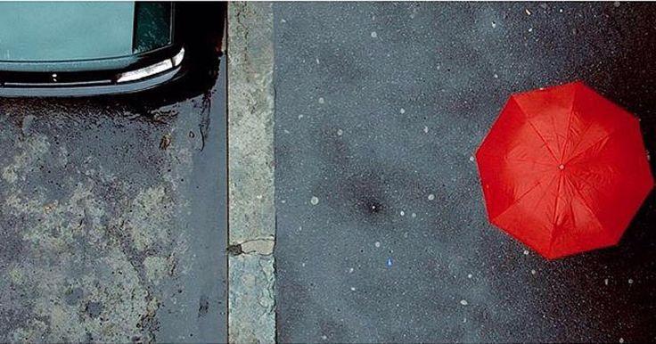 P H O T O | @dagotide  L O C A T I O N | sotto la pioggia di Torino  S E L E C T E D | @giuliano_abate & @emil_io F E A U T U R E D  T A G | #ig_piemonte #piemonte by ig_piemonte