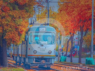 Beautiful seasonal october image from romania with vibrant fall in Bucharest on tram line 25