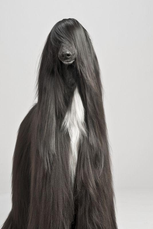 """Morram de inveja dos meus lindos """"cabelos"""""""