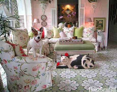 88 best pets images on pinterest