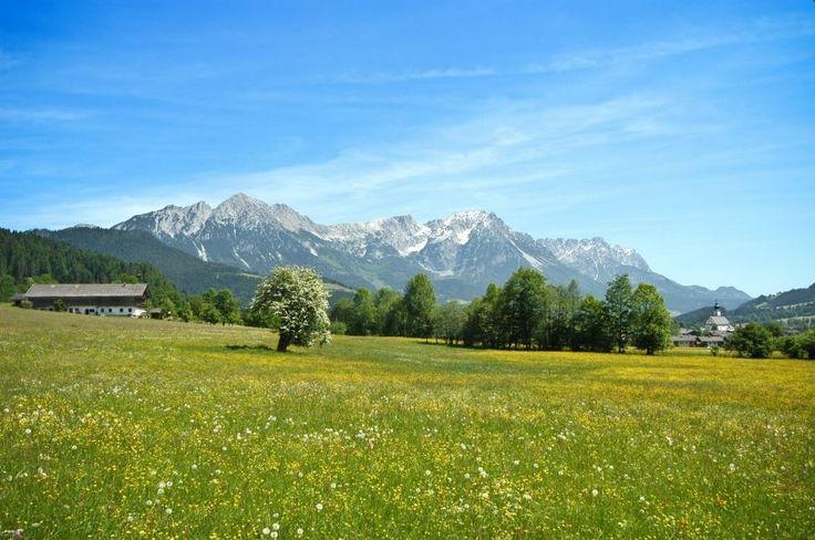Wandern mit Hund in Söll, Tirol, Österreich (c) TVB Wilder Kaiser  Hundemeile in Söll vorstellen. Die Meile führt entlang eines kühl vor sich hin sprudelnden Gebirgsbaches, worin sich Ihr Hund erfrischen kann, abseits von Wiesen und Äcker. Außerdem lässt er sich durch die Nähe auch wunderbar an die Wanderung anschließen. Es gibt dort noch einen öffentlichen Hundespielplatz und einen Auslaufplatz, wo sich Ihr Vierbeiner noch mal richtig austoben kann.