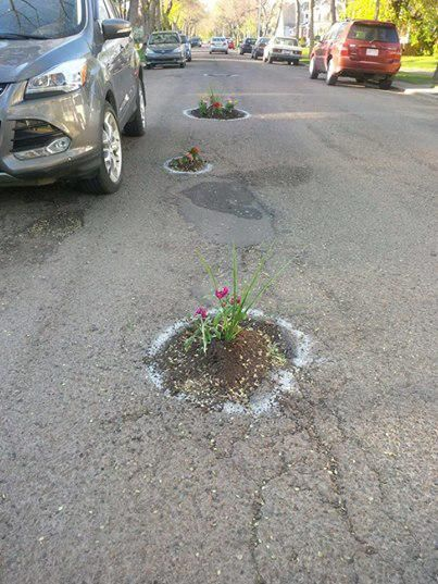 Got potholes in your street?  Plant Flowers - http://dtrnsfr.us/1FsKA9C