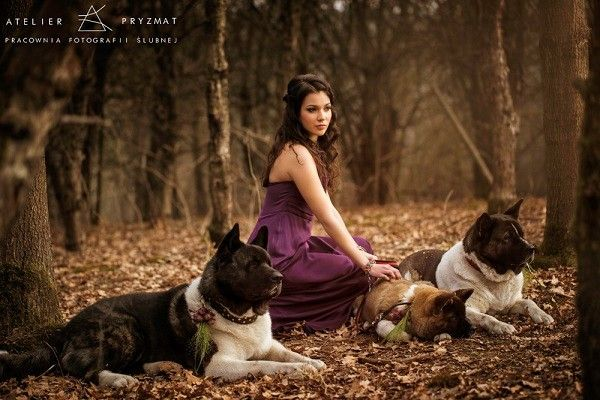 #Dagnez #wedding #dress#autumn #lovely #dogs