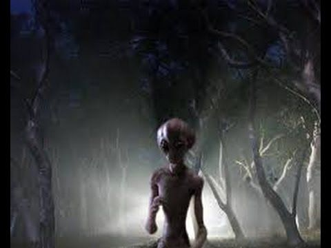 REAL ALIEN FOOTAGE | JANUARY 5 2017