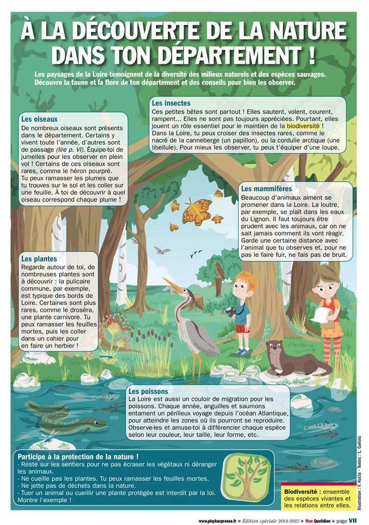 Edition spéciale Mon Quotidien - Infographie pour le Conseil Général de la Loire…