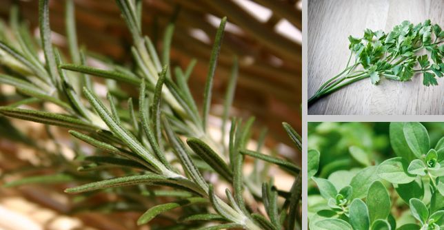 """<p>Today for National """"More Herbs, Less Salt Day,"""" take advantage of in-season summer herbs to flavor your favorite grilling items. Here are the most popular herbs, why they're good for us, and how to use them. </p> https://greatist.com/health/herb-guide"""
