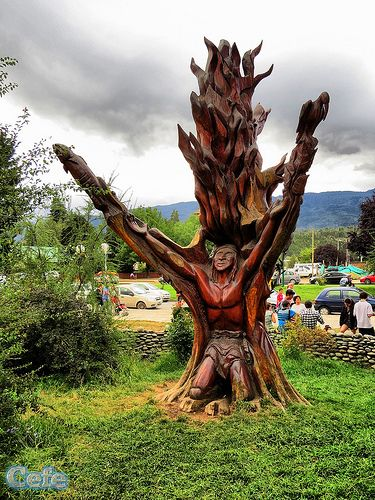 Follil Mapu Mew (HDR) En el año 2006 en El Bolson, Rio Negro, se realizó un concurso para tallar un árbol que debía cortarse ya que se encontraba enfermo. El ganador del concurso fue Emanuel Martínez. Las figuras talladas en esta obra de 5 metros representan las costumbres de los pueblos originarios, quienes respetaban e invocaban a la naturaleza y la tierra. Por ello el nombre, Follil Mapu Mew, que significa raíz de esta tierra.