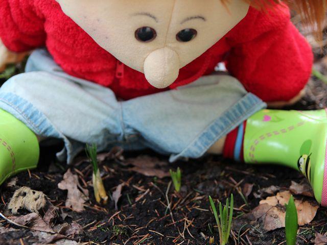 shavuot preschool lesson plans