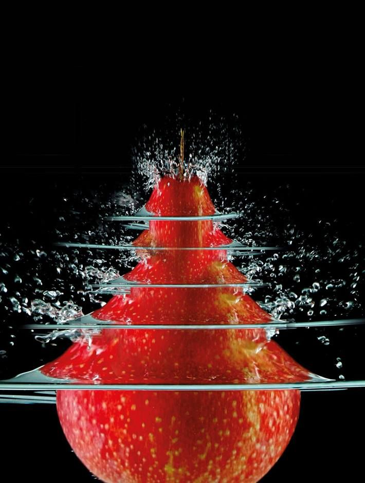 Abstract christmas tress by peter hofstetter via behance