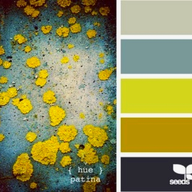 Mustard Kitchen Paint: 95 Best Images About Color Palettes On Pinterest