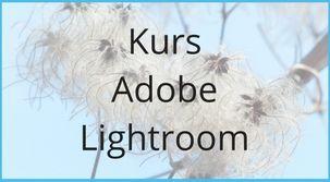 Kurs Adobe Photoshop Lightroom to nowość w naszej ofercie. Przeznaczony jest dla osób zajmujących się fotografią, które chcą tworzyć albumy graficzne i galerie internetowe.   Szczegóły: https://www.cognity.pl/kurs-adobe-photoshop-lightroom,s2,608.html #cognity, #Adobephotoshop #lightroom,