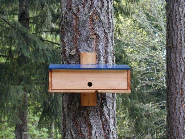 Wood Bird Shelter : Nighttime shelter for winter birds plans to build a bird