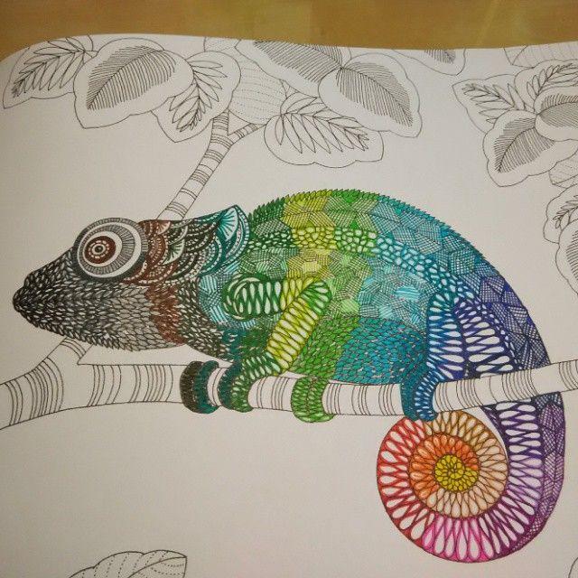 Milliemarotta Animalkingdom Chameleon Adult ColoringColoring BooksColouringChameleonsSharpie