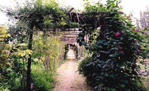 the passage to the beautiful Kynthia pool