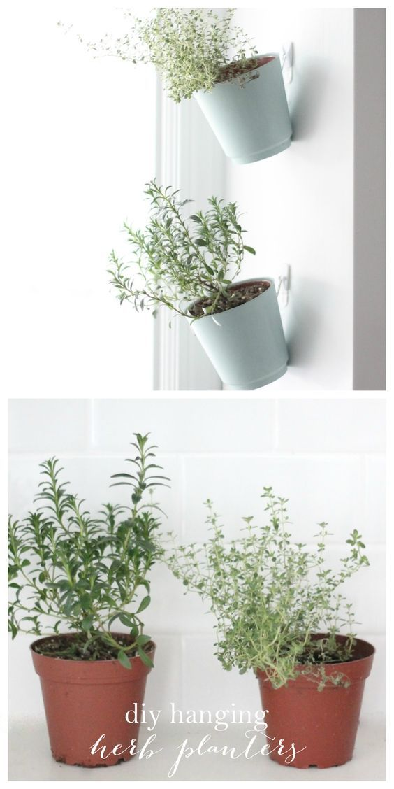 command hook ideas - hanging herb planters as seen on Domino