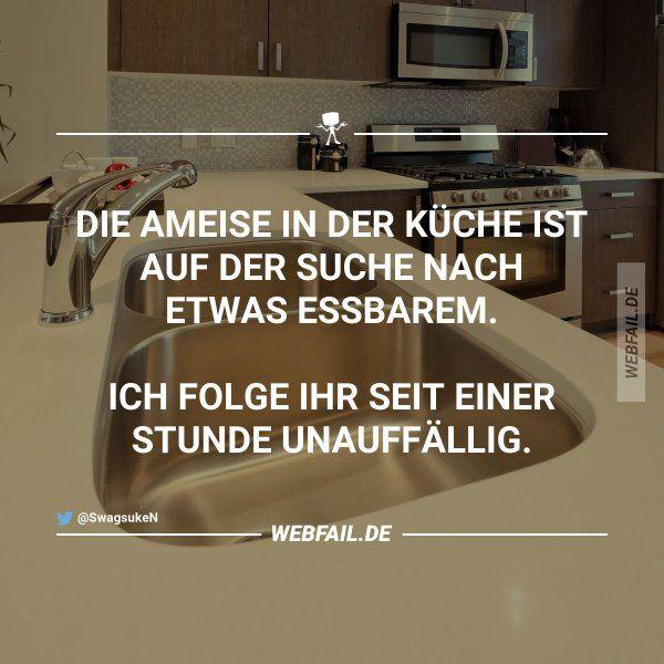25+ best ideas about Songtext übersetzung ins deutsche on - ameisen in der küche was tun