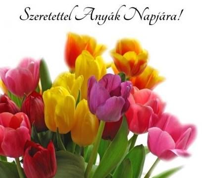 Bokrétát kötöttem Jó anyám napjára, Örül a bokrétám Minden egyes szála. S azt mondatja velem Illatos virágom: Legyen áldás az én Édes jó anyámon.