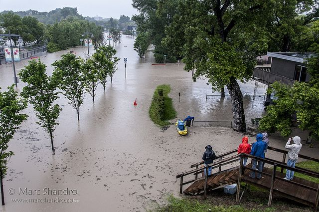 Calgary Flood 2013 - Rescue of Stuff on Memorial Drive   Flickr - Photo Sharing!