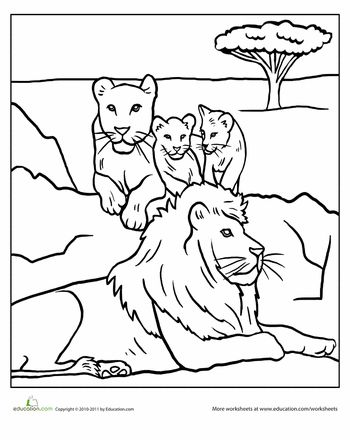 childrens coloring pages lions - photo#25