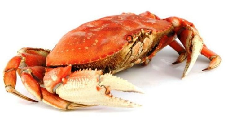 Crab is low in mercury. One of the big concerns with eating a seafood rich diet is exposure to mercury.