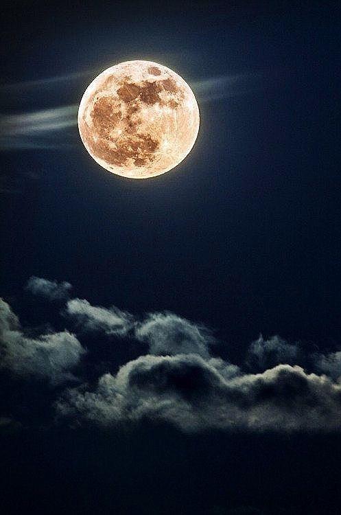 "Good Night!   (no words -  ""Just beautiful..."")"